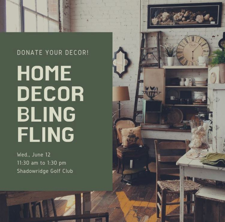 North County Women In Networking Home Decor Bling Fling